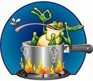 Frog Iran Reset